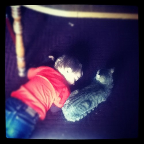 Caleb is having a good time napping under the table with our new cat, Finley! 🐱 #brother #goodtimes #goofy #funny #iphonesia #family #cat #cute #love (Taken with instagram)