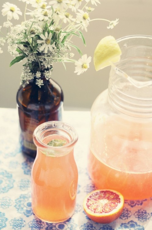 kynodontas:  gastrogirl:  blood orange italian soda with basil simple syrup.  more citrus + herbs in drinkable format