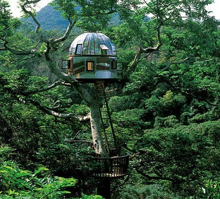 Portland, Oregon treehouse