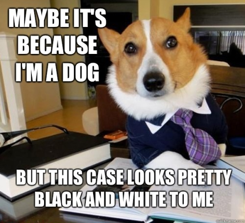 Astute observation, Lawyer Dog