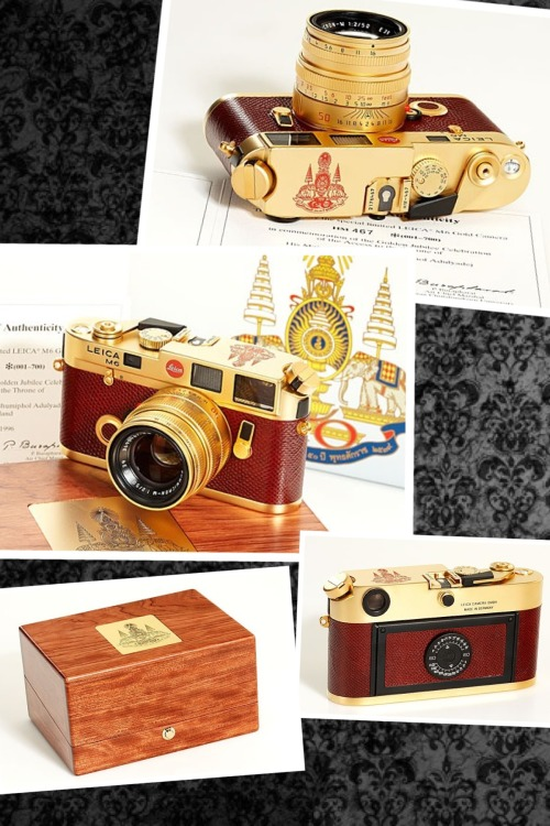gigistoll:  Leica Lust in 24 karat gold. sanukwanderlust:  If I ever have a few extra thousand to burn…I want a Leica.  This is a special edition M6 24 karat gold plated King Bhumibol, King of Thailand, celebrating 50th anniversary of his coronation…gorgeous.