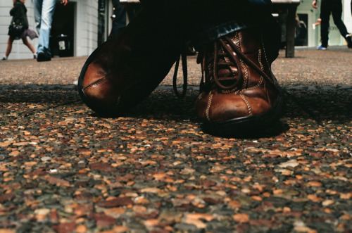 Moppie's shoes | Auckland | 2011