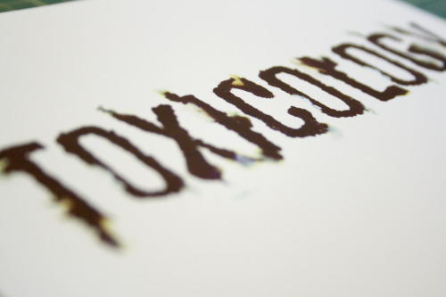 Close up of type Booklet- Umbrella Custom ©2012