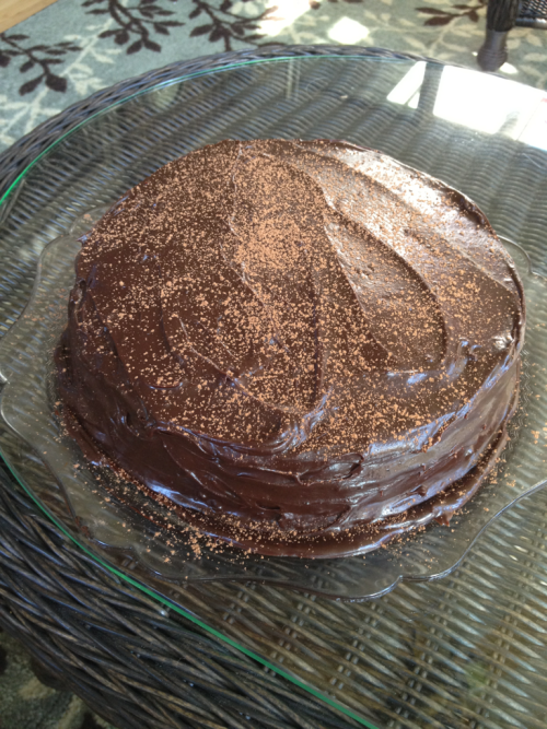 i found this recipe for cocoa layer cake in the february 2011 issue of bon appetit last week, and i made that baby ASAP. it is amazing — rich and cocoa-y and has three layers (!!!). it was also the perfect birthday cake for my big bro!! happy birthday e-boo! xoxo!
