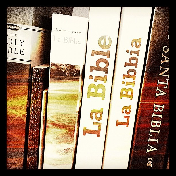 Some of my Bibles… #Bible #book #Jesus #Christ #salvation #church #study #christian #greek #hebrew #translation #french #italian #spanish #english #old #new #testament #holy #wordofGod #gospel #believe #beliefs #read #literature #message #love #forgiveness (Wurde mit instagram aufgenommen)