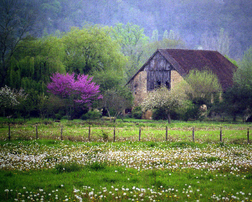 agoodthinghappened:  Quelque part en Périgord by Yvan LEMEUR on Flickr.