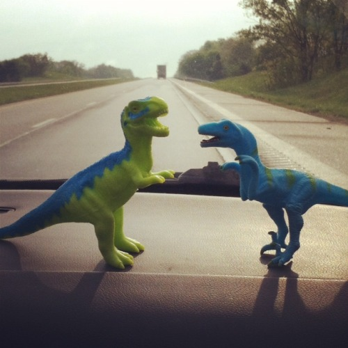 A bit of a family road trip this weekend…some of our prehistoric pals joined us for the adventure.