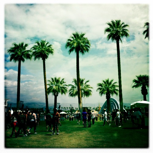 Coachella. Indio, California.