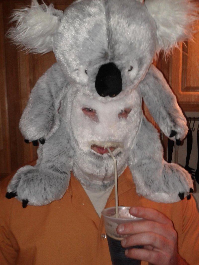 i WANT!!! collegehumor:   Terrifying Man Wears Koala as Mask   SWEET DREAMS TUMBLR