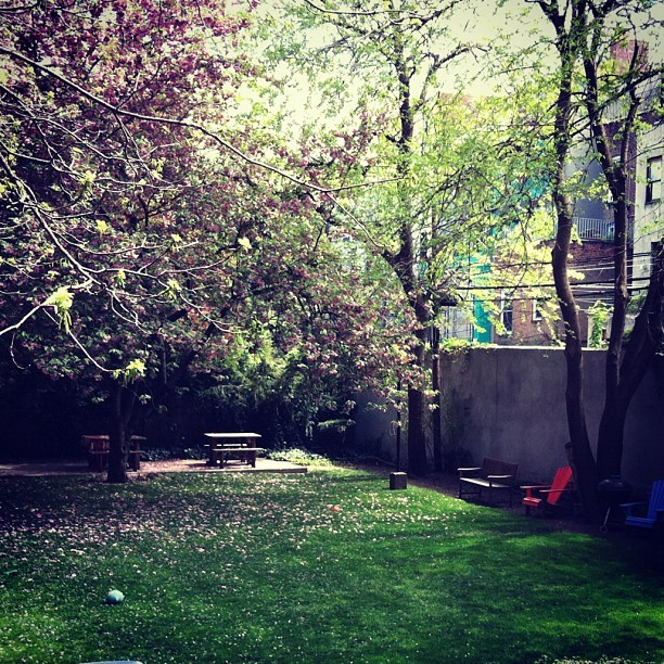 I'm gonna be living above this courtyard my last week in NYC so……. (Taken with instagram)