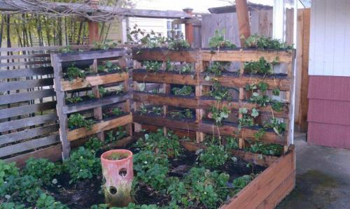 Vegetable garden using re-purposed palettes by BRING Recycling
