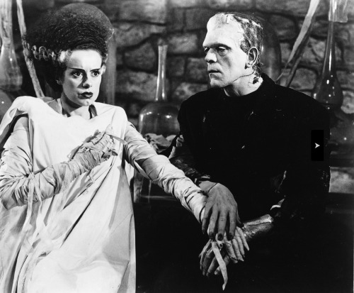 arcaneimages:  The Bride of Frankenstein (1935). So clear. So beautiful. Via William Forsche collection.