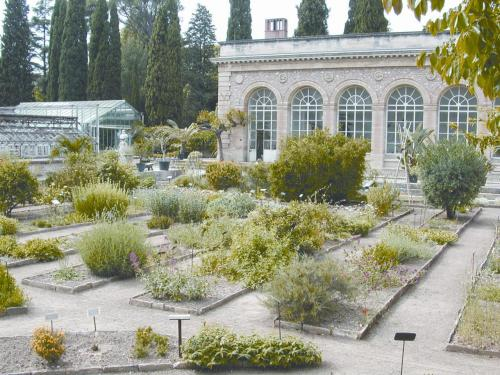 La Jardin des Plantes de Montpellier avec la serre Martins @credits   The Jardin des plantes de Montpellier is a historic botanical garden and arboretum. The garden was established in 1593 by letters patent from King Henri IV, under the leadership of Pierre Richer de Belleval, professor of botany and anatomy. It is France's oldest botanical garden, inspired by the Orto botanico di Padova (1545) and in turn serving as model for the Jardin des Plantes de Paris (1626).  The Montagne de Richer lies within the garden's oldest section, which also now contains a systematic garden. The garden was expanded twice in the 19th century. Its orangery was designed by Claude-Mathieu Delagardette (1762–1805) and completed in 1804, the arboretum was landscaped in 1810, and the English Garden, with pool and greenhouse, dates from 1859. The monumental Martins greenhouse opened in 1860. Today the garden contains about 2,680 plant species, including 500 native to the Mediterranean region. Of these roughly 2,000 species are grown outdoors, and 1,000 under glass.