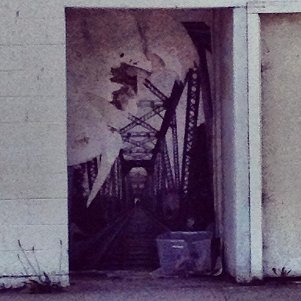 ayymichelleee:  streets of #santacruz #art (Taken with instagram)