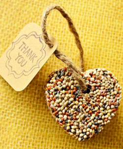 {Eco-Friendly} Birdseed Wedding Favors