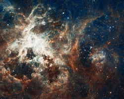 jtotheizzoe:  Happy  22nd Birthday to the Hubble!! On April 24th, the Hubble Space Telescope marks its 22nd year in orbit. That means its mission has lasted longer than many of your lives, and it's still churning out amazing work (no pressure though). Sources say that the Hubble promises that it's not get all crazy like it did last year on its birthday. To celebrate, the Hubble folks have released this beautiful image of 30 Dor, a star factory in the Large Magellenic Cloud full of high-energy glowing gas. A fine piece of #starporn to decorate your dashboard with. But why stop there? We can do better than this picture. How about a super-huge 4,000 x 3,200 pixel version? Is that big enough for ya? No? Then how about an amazing zoomable version so you can dig deep down into the onion-like layers, a virtual rabbit hole of awesomeness? Still not enough? If you really must go bigger, I have to warn you … this is a pretty hefty link, and it probably won't open in your browser. Better to right-click and save. Here is an image that laughs in the face of any adjective I try to place before it. Behold a 267-Mb 20,323 x 16,259 pixel smorgasbord of starry goodness, over 300 million pixels of HOLY CRAP. BONUS: How these amazing images are created and edited by master star pornagraphers. (↬ Bad Astronomy)