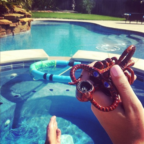 Scorpi and I chilling by the pool, shinking about the future! Sun n Weed 4 ya bitch asses. #weed #marijuana #scorpion #MotherNature #live #love #laugh  (Taken with instagram)