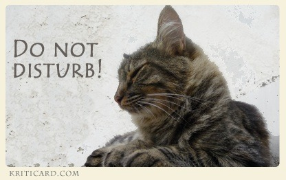 One of my e-cards of the CAT-CARE-CARDS