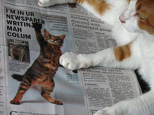 "thefluffingtonpost:  Area Kitty Upset by Mainstream Media Portrayal of Cats Pickle, a local cat, is furious by the mainstream media's negative portrayal of his species.  ""Cats are often depicted by the media as poor spellers, many times engaged in an activity with some sort of invisible friend, tool or instrument,"" said Larry Owens, the cat's lawyer.  ""Pickle feels that he speaks for cats everywhere when he says that he is sick of this damaging stereotype and how it is constantly reinforced by the mainstream press."" Pickle is seeking a formal acknowledgement of the issue from the Society of Professional Journalists and plans to put together an educational packet entitled ""The Rich History of Cats: No LOLing Matter"" to be released this fall. Via Steven2005."