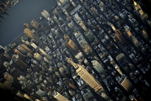 curiae:  Manhattan, INCEPTED by friskypics on Flickr.