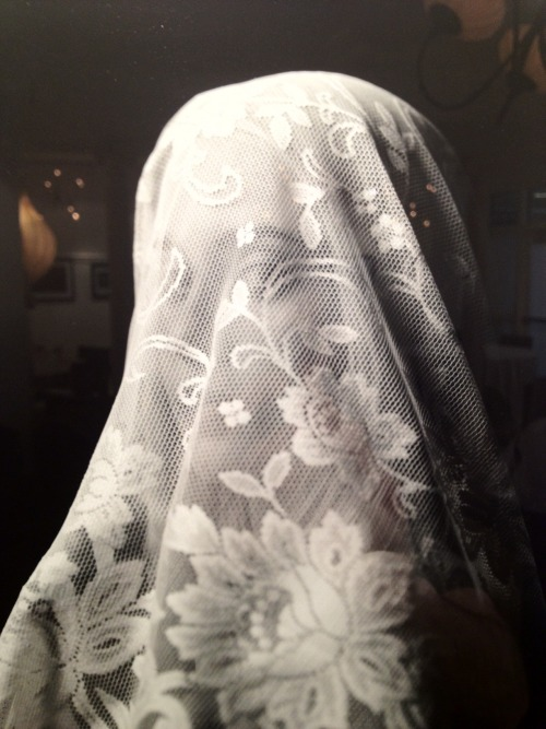Orianna Reardon, Veil (installation shot) On display at Panopticon Gallery from April 12 - May 28, 2012