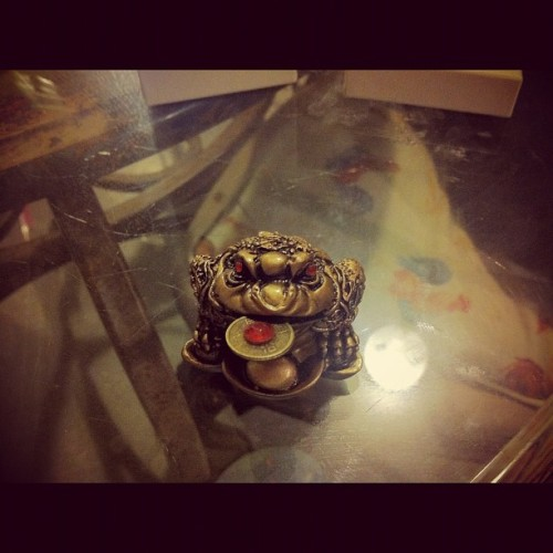 My new favorite possession #evil #asian #frog (Taken with instagram)