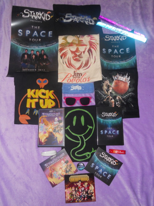 I've got a fever and the only prescription is more Starkid! My Space Tour DVD finally came in the mail today :D So of course the only logical thing I could do was get all of my Starkid merch and take a picture of it. Guys, I think I'm slightly obsessed :P