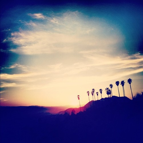 #gratuitous #sunset #palmtrees (Taken with Instagram at Dante's Peak)