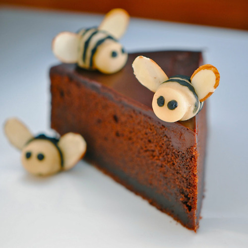 yummyinmytumbly:  Nigella's Chocolate Honey Bee Cake