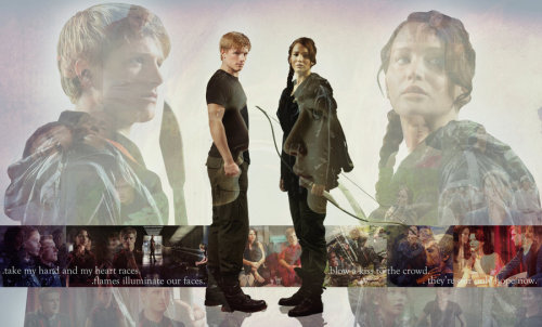 Hunger Games Desktop by *Grodansnagel