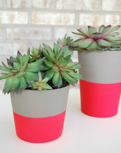 The neon pots are blowing up! Go check them out on the blog! scissorsandthread:  Neon Plant Pots | The Proper Pinwheel The thing with IKEA is that more often than not, you can pick out straight away that the item is from IKEA! I walk into someone's house, see their pillows and go - IKEA. I watch tv shows and see someone's bed and say - IKEA! IKEA is great for cheap items which is great for us low income earners (and those of us who constantly change their tastes!) but it can be a bit impersonal. Adding your own DIY touch to items means that you get the cheap price but it's still 'yours'. There are lots of great sites out there that show you how to do this (IKEA Hacks is great!) but you can't go past a super quick makeover this - some neon spray paint brings these cheapo pots into the now (trendy pots!) and make them your own.