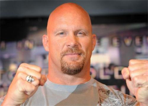 stone cold by definition is a rattle snake