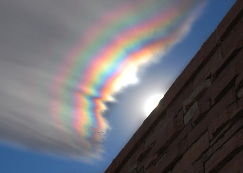 goodnamesgone:  Iridescent clouds.