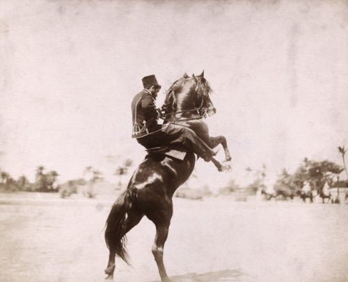 ileftmyheartinistanbul:  (via A Turkish soldier rides his horse and wears a uniform and fez.)