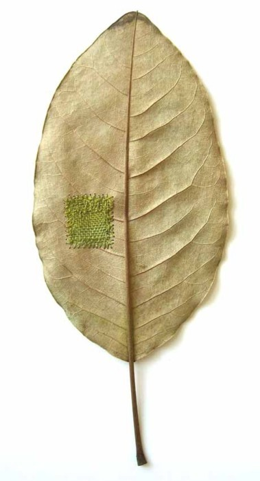 mended leaf. inspirationlane:  (via ZsaZsa Bellagio)