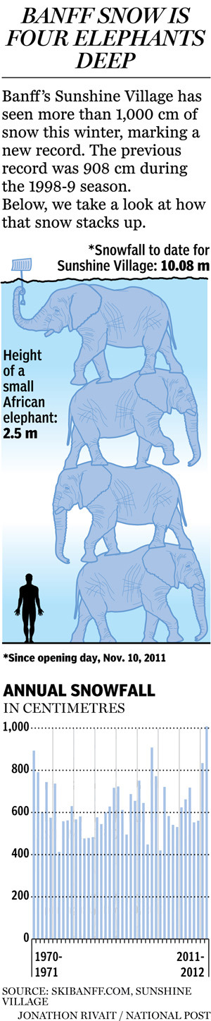 Graphic: Banff gets four elephants worth of snowBanff's Sunshine Village set a new record for snowfall this winter. The National Post's Jonathon Rivait takes a look.
