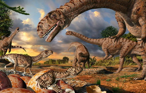 "Why Huge Dinosaurs Had Such Tiny Babies A new study may explain many mysteries about dinosaurs, such as why enormous species had such small offspring, why non-flying dinos went extinct, and why today's birds fly. The paper, published in the journal Biology Letters, emphasizes how mammals and birds — but not non-avian dinosaurs — were able to persist beyond a major extinction 65.5 million years ago. The large body size and egg-laying ways of dinos may have helped to do them in, along with hungry mammals. ""The most successful (dinosaurs) were the very large ones that were able to escape the competition trap and replenish their numbers. After the mass extinction, they again tried to evolve large size, but to escape the competition trap they had to become multi-ton animals,"" lead author Daryl Codron told Discovery News. keep reading"
