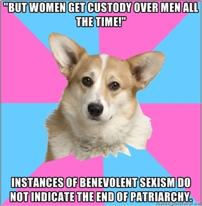 "submitted by feministgrammarianhippieartist [head of a corgi on alternating pink and blue background, text above reads """"But women get custody over men ALL the time!"""". bottom text reads ""Instances of benevolent sexism do not indicate the end of the patriarchy."".]"