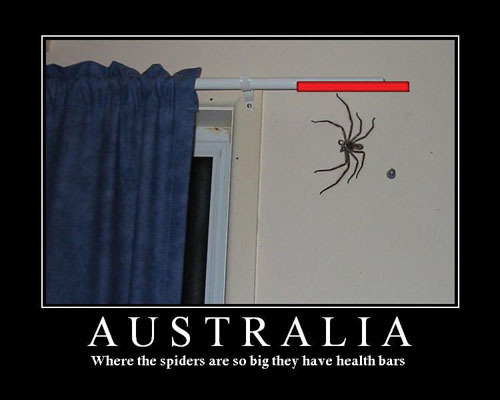 If only that were the case. It would make killing spiders a lot more entertaining.