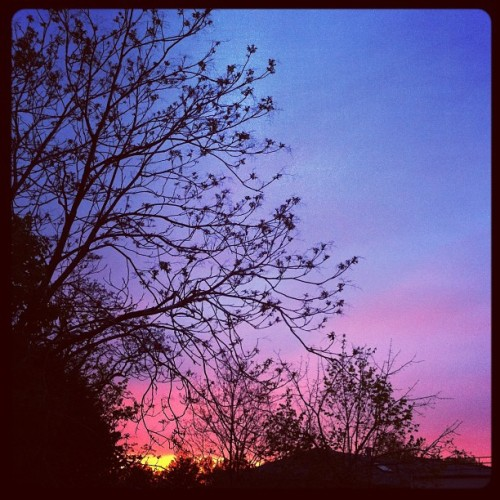 The sunset is gorgeous right now. OMG. 😍🌆 (Taken with Instagram at Northern Blvd. & Bell Blvd.)