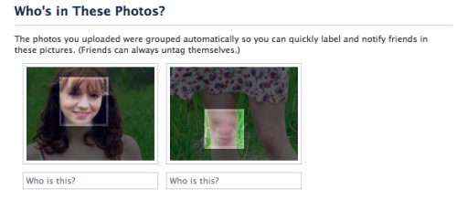 kristenwiigswig:  i'm laughing so hard facebook thought my knee was a face