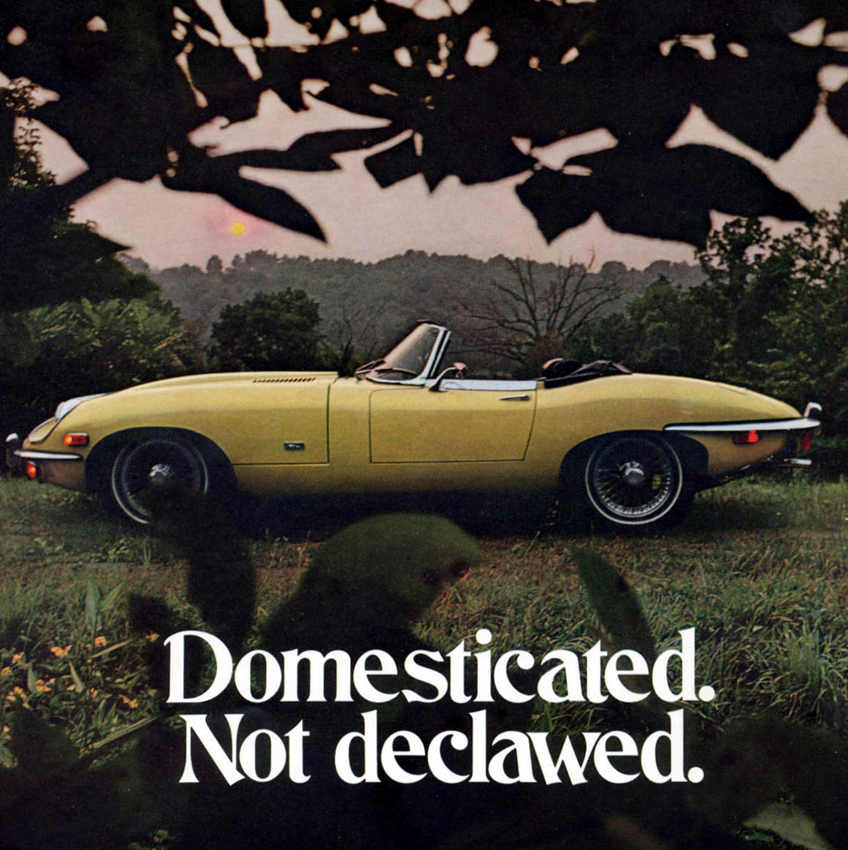 Jaguar E-Type, 1970
