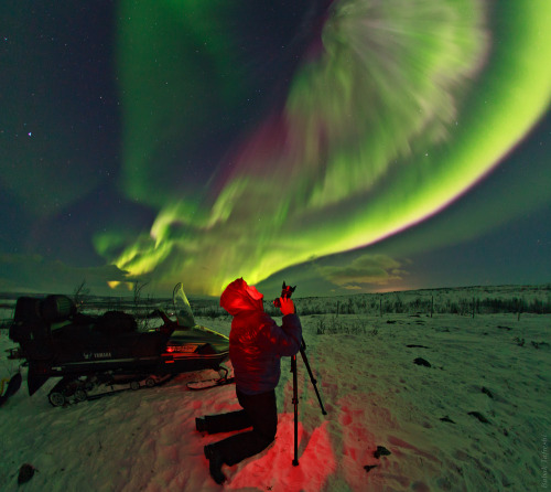 Aurora Photographer by Babak A. Tafreshi A spectacular display of Aurora Borealis or the Northern Lights lit up the sky over Sweden Mountains near Kiruna, in the Arctic region.