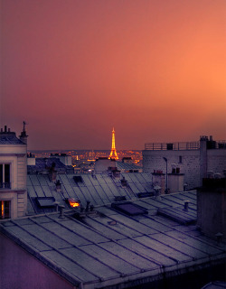 Hopping around the Parisian rooftops.