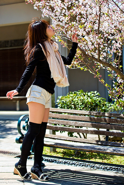 Series:  Kayo sakura by Asian.Impressions on Flickr.