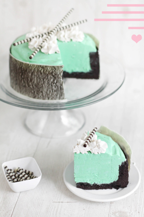 Mint White Chocolate Mousse Cake