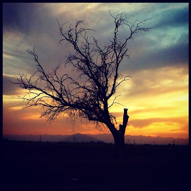 Random photo I took while driving #iphone #instagram #webstagram #esperanzaphotography #photooftheday #sunsets #photography #nature #iphoto #followme #beauty — photo taken by thecamerakidd