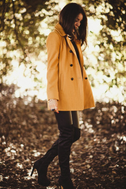 What I'm wearing: Siren Boots, love and luck wallet, Dotti mustard jacket, Michael Kors Watch, YSL ring, Lovisa necklace behind the scenes from the dotti shoot today  Model: http://aleygreenblo.tumblr.com/ Photographer: www.juliatrotti.tumblr.com Stylist: http://jessiemcnaught.tumblr.com