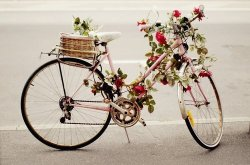I want this bike! So so so pretty!