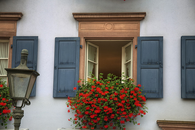| ♕ |  Window in Freiburg, Germany  | by © Werner Kunz